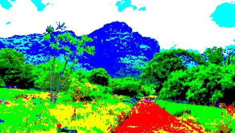 克斯腾伯斯国家植物园